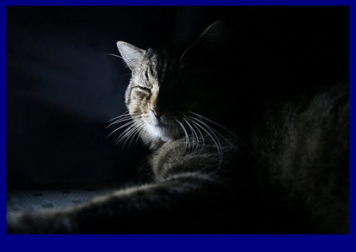 www.zmphoto.it Messidra